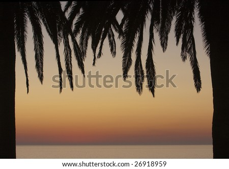 Two palm trees form a frame with an ocean and sunset in the background. - stock photo