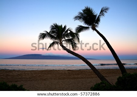 Two palm trees overlooking Kaanapali Beach at sunrise.  The cloud covered island of Lanai is in the background. - stock photo
