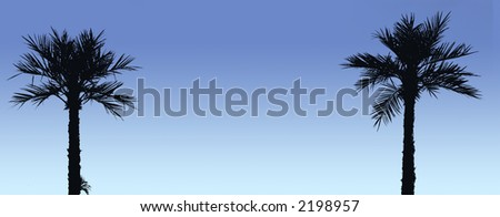 Two palm trees silhouetted against blue sky; good copy space