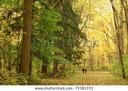 Two people walk through an autumn forest - stock photo