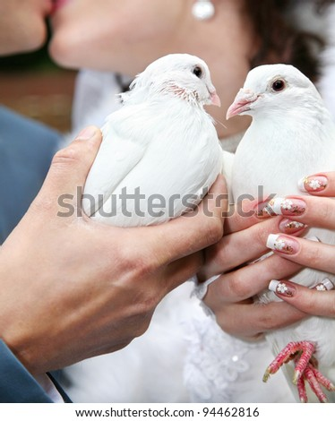 Two pigeons in hands of kissing couple on wedding day