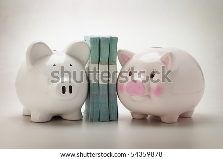 Two Piggy banks and stacks of paper money