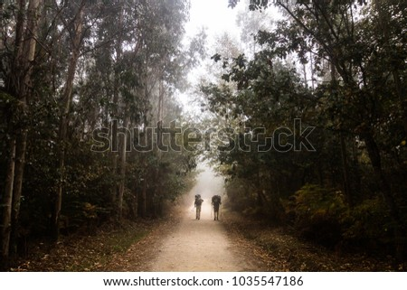 Pilgrimage Stock Images, Royalty-Free Images & Vectors ...