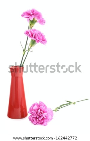 Two pink carnation in a small vase on a white background - stock photo
