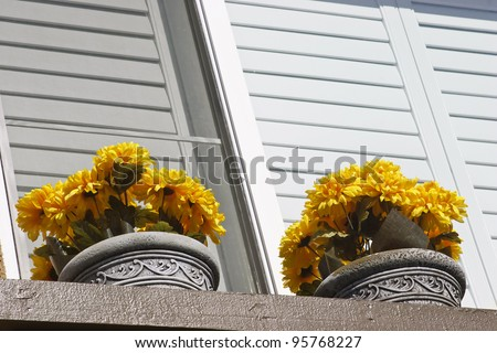 Two Pots with flowers on a window ledge. - stock photo