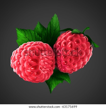 two raspberries with clipping path on gray background - stock photo