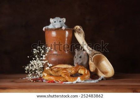 Two rats with a jug and a bagel - stock photo