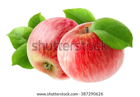 Two red apple fruits with leaves isolated on white background with clipping path - stock photo