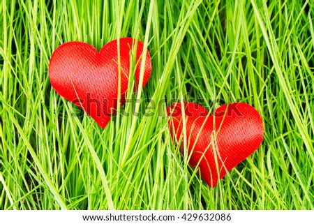 Two red hearts on a background of green grass - stock photo