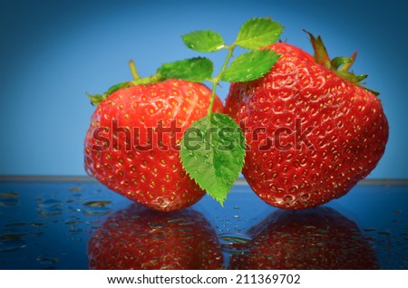 Two red strawberries with green leaf  standing on wet mirror surface. Closeup. Blue background - stock photo