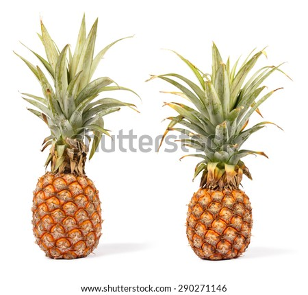 two ripe pineapple isolated on white background,  put on vertical - stock photo