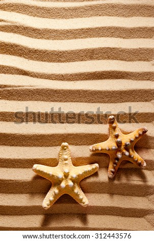 Two sea stars on a striped sandy background. - stock photo