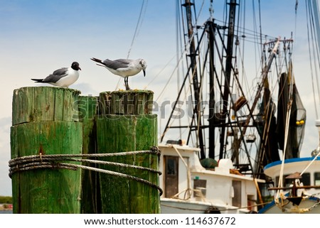 Two seagulls resting by old fishing boats - stock photo