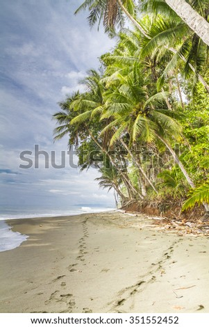 Two sets of footprints disappearing into the distance on a sunlit  palm fringed tropical beach, Osa Peninsula, Costa Rica - stock photo