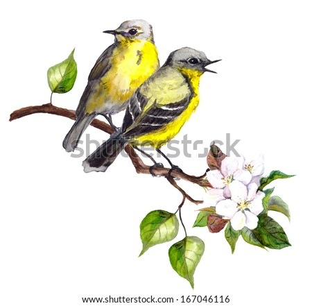 Two song birds on spring branch with leaves and flowers - stock photo