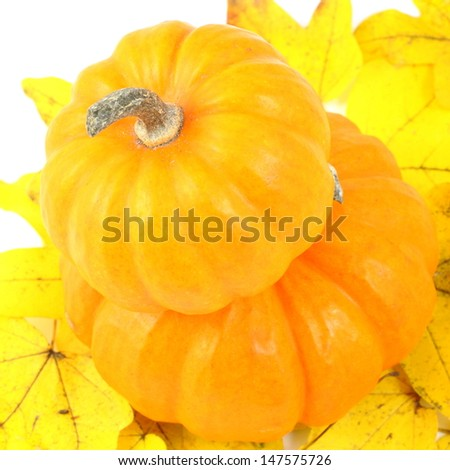 Two stacked mini pumpkins on fall yellow leaves - stock photo