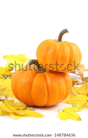 Two stacked mini pumpkins on yellow fall leaves