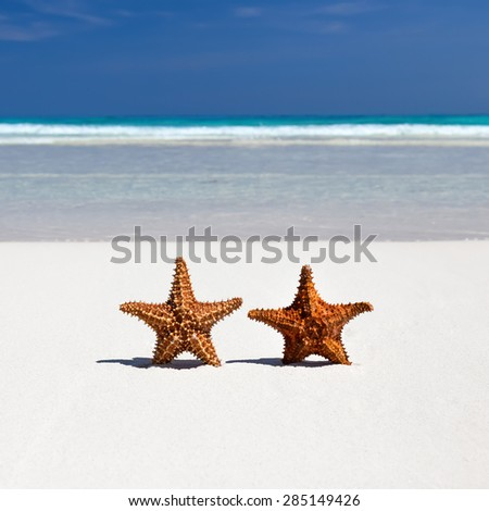 Two starfishes on caribbean sandy beach, travel concept - stock photo