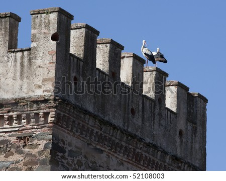 Two storks courting in springtime on top of Renaissance era castle in Zafra, Spain - stock photo