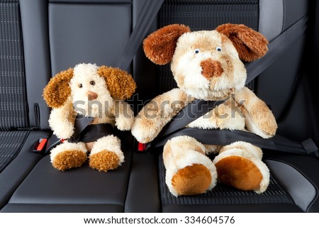 two stuffed animals with fastened seat belt - stock photo
