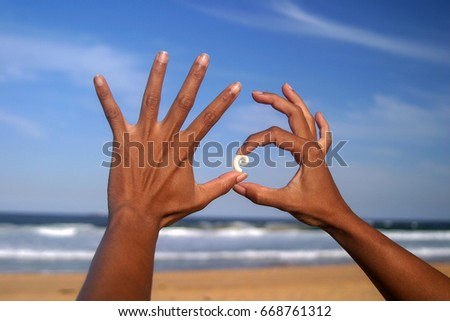 Two sun-tanned hands hold a small white spiral shell under a blue sky on Palm Beach, Sydney, New South Wales, Australia