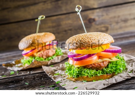 Two tasty homemade burgers - stock photo