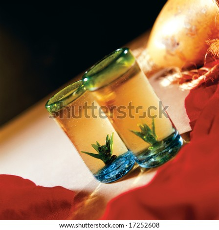 Two tequila shots - stock photo