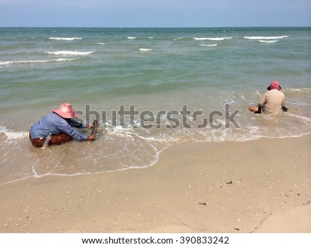 Two thai fishermans are searching for shells (Pharella javanica) on the beach of thailand