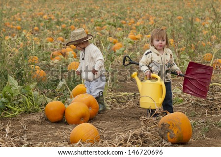 Two toddlers at the pumpkin patch.