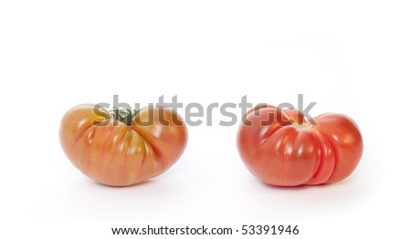 Two tomatoes isolated in white background - stock photo