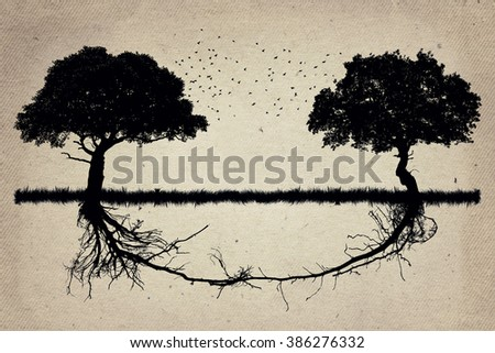 Two trees in front of each other with their roots growing together. Business collaboration teamwork and growth. Strong partnership and foundation as a business concept - stock photo