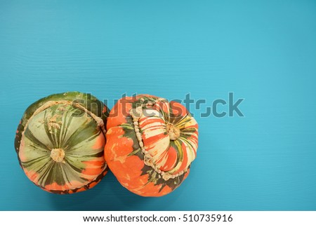Two Turks turban squash with attractive markings on a wooden background painted teal with copy space