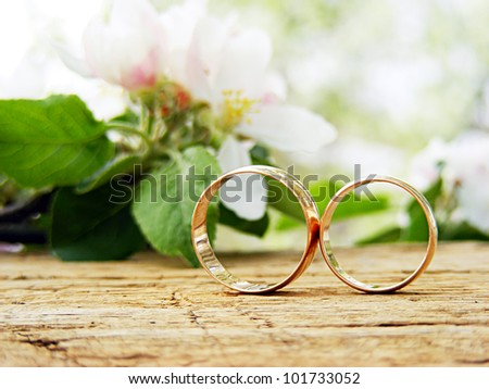 Two wedding rings and spring blossoms. Wedding concept. - stock photo