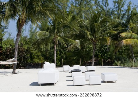 two white chairs under a palm tree in the florida keys
