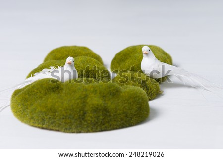 Two white doves symbolising peace, harmony and hope in a decorative display on green moss covered rocks over a white background - stock photo
