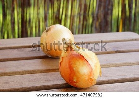 Two white onions on table