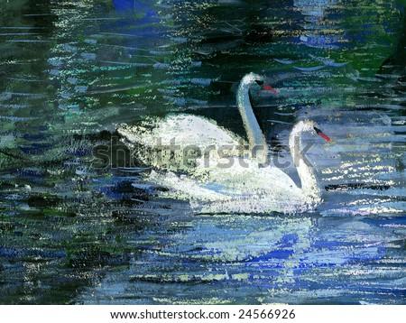 Two white swans on lake - stock photo