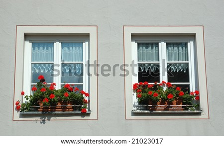 Two windows with red flowers