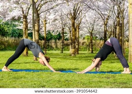 Two women practicing essential yoga pose - downward facing dog - stock photo