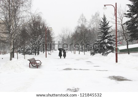 Two women walk through the park in the snow - stock photo