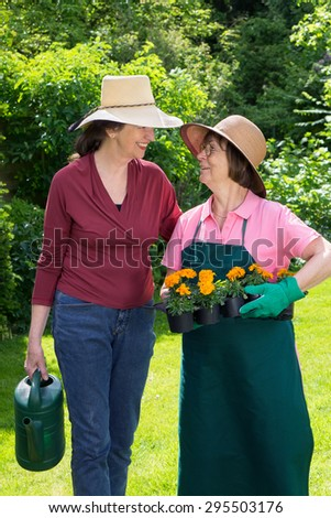 Two women working in a spring garden stopping for a friendly chat in their straw sunhats with one holding a tray of flower seedlings and the other a watering can - stock photo