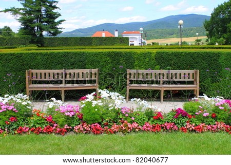Two wooden benches in a beautiful park garden