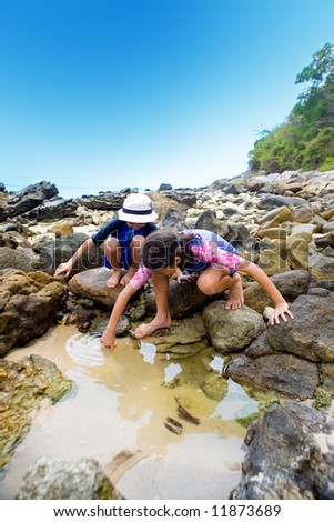 Two young children looking for little creatures in the rockpool  by the sea - stock photo