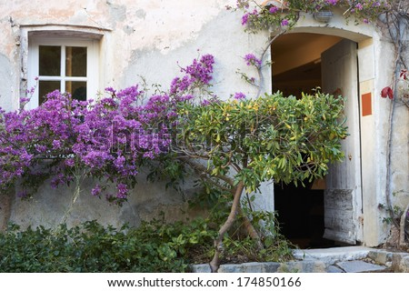 Typcal facade of Provence house with blossom flowers - stock photo