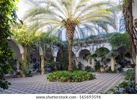 Typical Andalusian patio with fountain and numerous plants geraniums and carnations on the walls. Cordoba, Spain  - stock photo