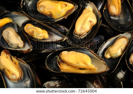 typical French recipe, mussels mariniere - stock photo