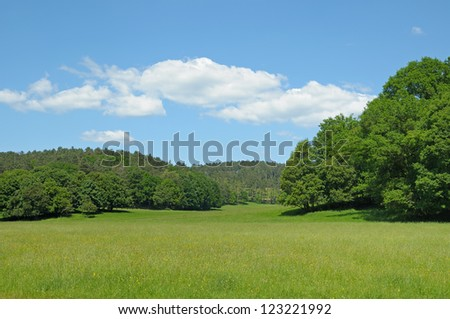 Typical landscape of Walloon, Belgium with forest and field in bright summer day - stock photo