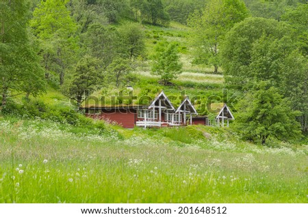 Typical norwegian houses with grass in the roof and painted in red - stock photo