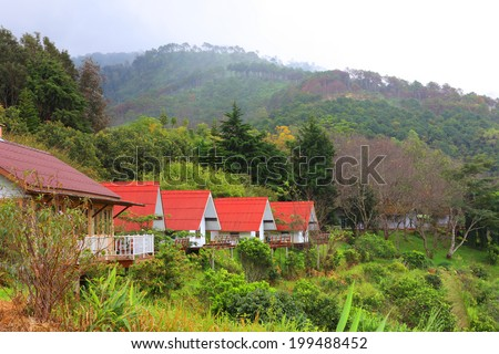 Typical red wooden house - stock photo