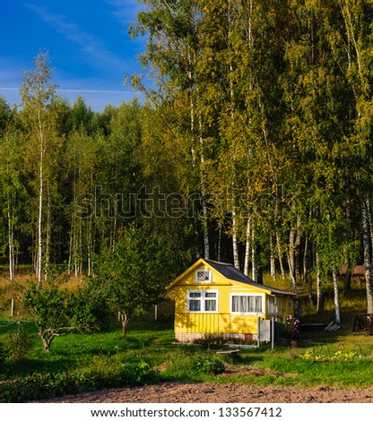Typical Russian country house among birch trees - stock photo